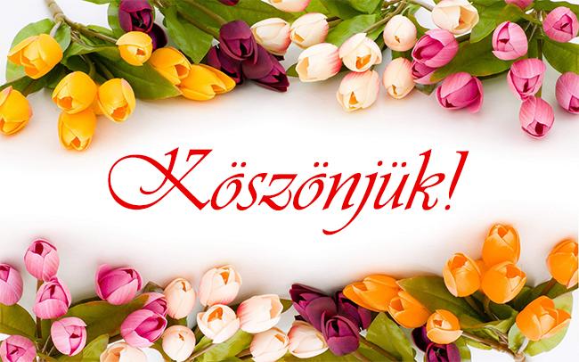 koszonjuk_2015